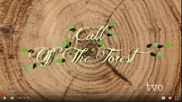 calloftheforest-titles2